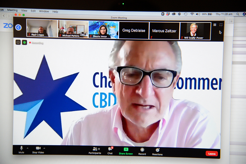 Business Alliance NSW & CBD Sydney Chamber Virtual Networking Event - Expert Presentation - #4